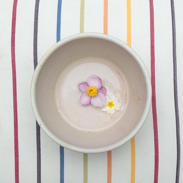 An Lenten Rose and a Primrose in a Stoneware bowl