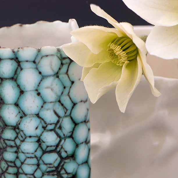 Honeycomb Vase on the left and a Clematis avalanche flower just opening.