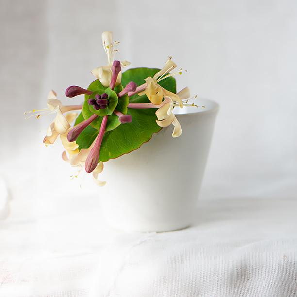 Stoneware beaker with honeysuckle flower.