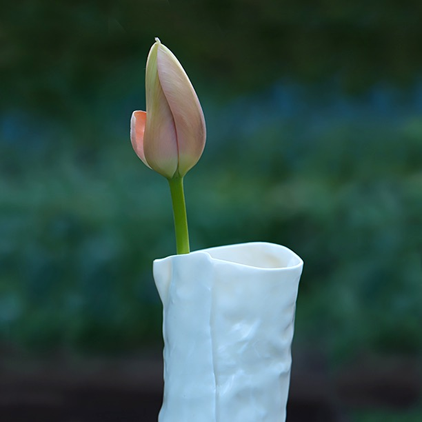 A single tulip, Prinses Irene, in a porcelain vase.